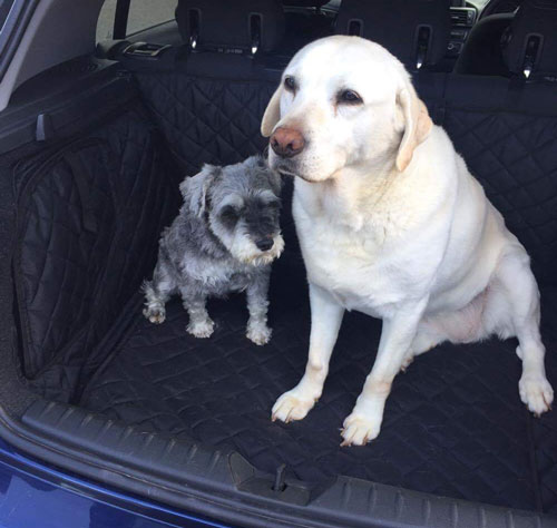 Dogs Traveling In Style Boot Liners