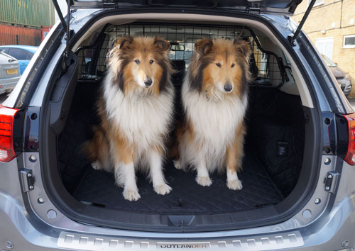 dogs traveling  style boot liners